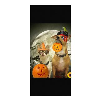 Chihuahuas do Dia das Bruxas 10.16 X 22.86cm Panfleto