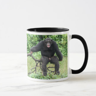 Chimpanzé em África Caneca