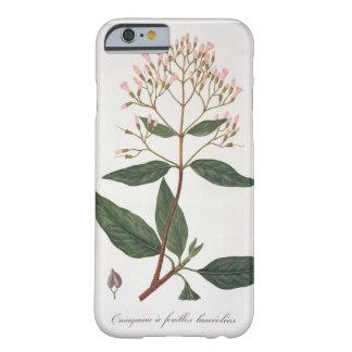 "Chinchona de ""Phytographie Medicale"" pelo Ro de Capa Barely There Para iPhone 6"