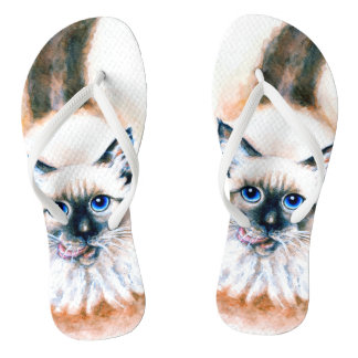 Chinelos Aguarela do gato Siamese