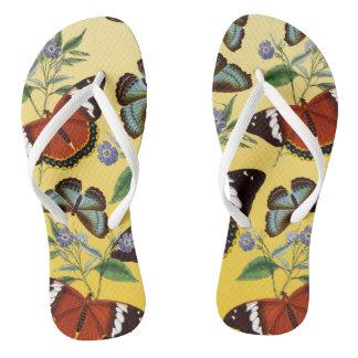 Chinelos as borboletas misturam o amarelo