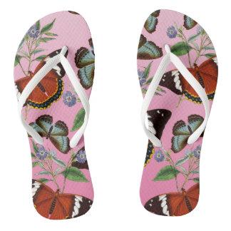 Chinelos as borboletas misturam o rosa