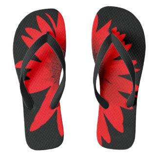 Chinelos Calçados vermelhos do falhanço de sacudir da