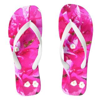 Chinelos cor-de-rosa bonitos do impressão do