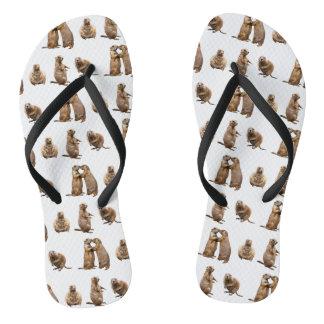 Chinelos da agitação do cão de pradaria (escolha a