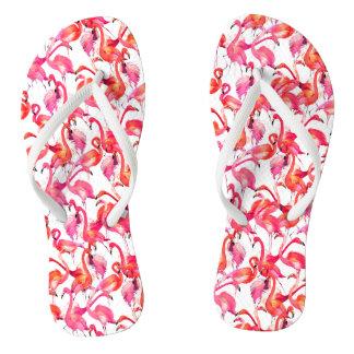 Chinelos Flamingos da aguarela nas aguarelas