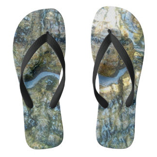 Chinelos flip-flops do latido