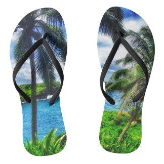 Chinelos Flip-flops havaianos do estilo