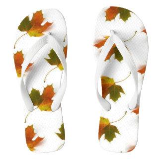 Chinelos Folhas de outono