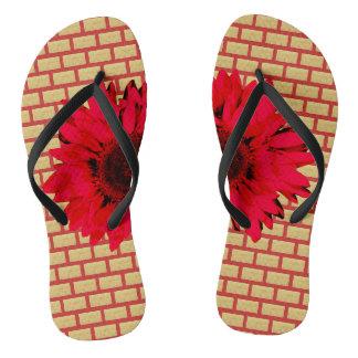 Chinelos Girassol do vermelho de tijolo de Tan