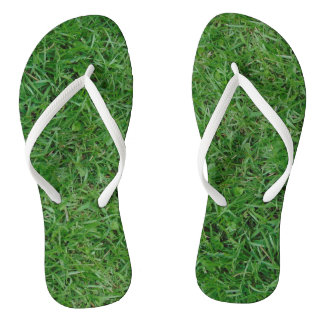 Chinelos Grama verde do verão, jarda, foto do gramado 099