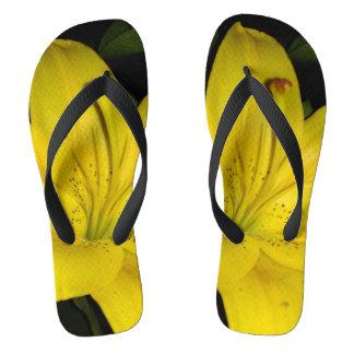 Chinelos Lírio amarelo