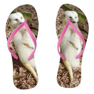 Chinelos Meerkat branco,