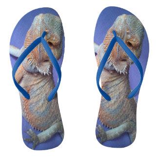 Chinelos O azul farpado o mais bonito da foto do dragão