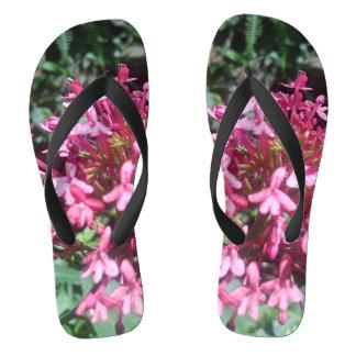 Chinelos o rosa cora flip-flops