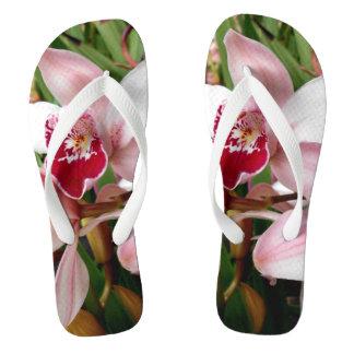 Chinelos Orquídea branca e cor-de-rosa do Phalaenopsis