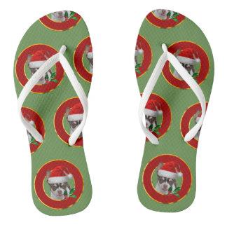 Chinelos personalizados chihuahua do Natal