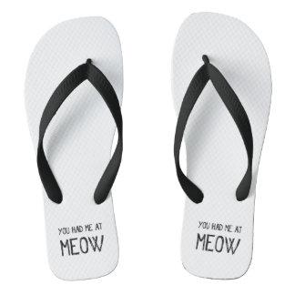Chinelos Você teve-me no Meow