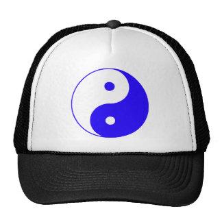 Chinês Taijitu do sinal do taoísmo de Yin Yang Yin Bones