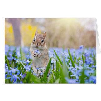Chipmunk com cartão da flor