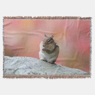 Chipmunk no outono lençol