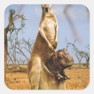 Choque abstrato do bebê do canguru dos animais adesivo quadrado