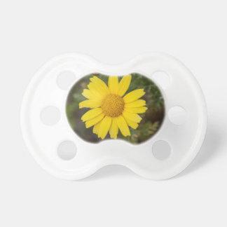 Chupeta Amarelo do cu da flor da margarida