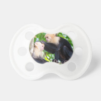Chupeta Amor do macaco