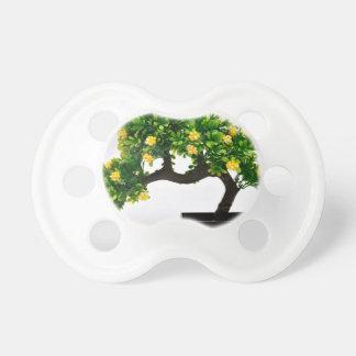 Chupeta Árvore dos bonsais