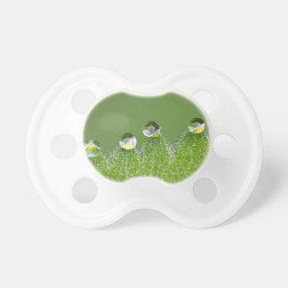 Chupeta As gotas da água da natureza conectam com o