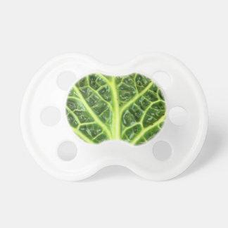 Chupeta Berza chou couve-de-milão Savoy cabbage vert