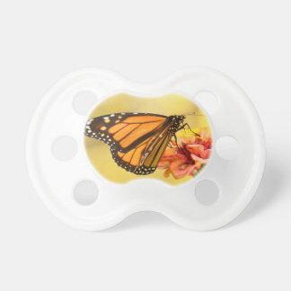Chupeta Borboleta de monarca no Zinnia