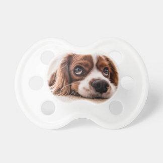 Chupeta Cão canino triste