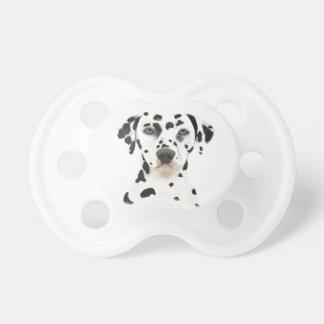 Chupeta Cão Dalmatian