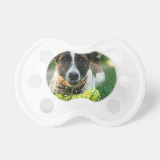 Chupeta Cão e seu osso do brinquedo