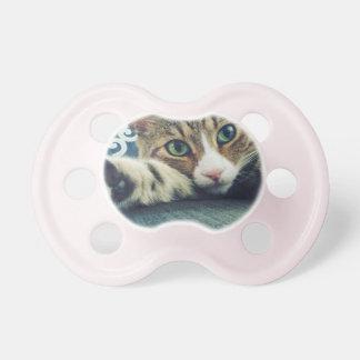 Chupeta Cartão do feriado do gato de gato malhado do floco