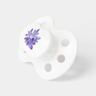 Chupeta Cinco açafrões violetas 05,0, cumprimentos do