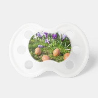 Chupeta Cinco ovos fracos que encontram-se perto dos