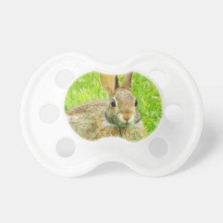 Chupeta coelho