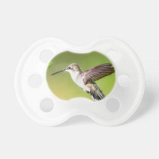 Chupeta Colibri em vôo