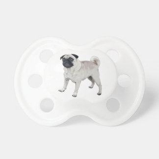 Chupeta Cutie do Pug