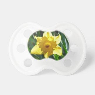 Chupeta Daffodil amarelo 03.0.g