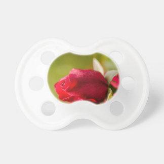 Chupeta Design ascendente próximo da rosa vermelha