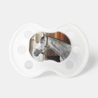 Chupeta Destin - abrigo do cavalo