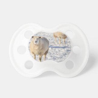 Chupeta Dois carneiros que estão na neve durante o inverno