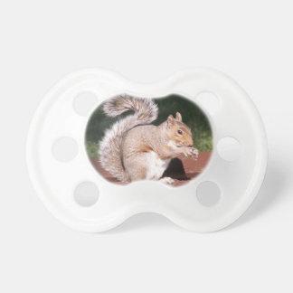 Chupeta esquilo