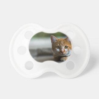 Chupeta Gatinho alaranjado do gato malhado