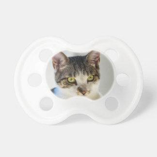 Chupeta gato