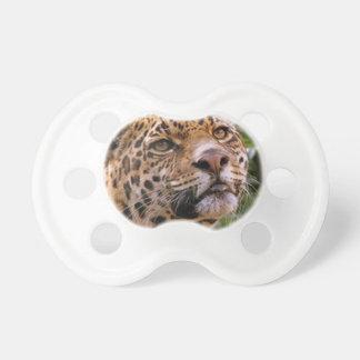 Chupeta Jaguar inquisidor