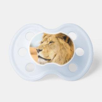 Chupeta Leão grande que olha longe